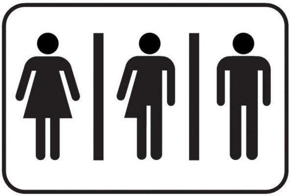تفاوت بین دوجنسه و ترنسکشوال-rahelesadeghi.ir